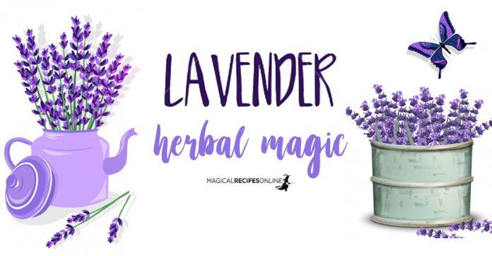 Herbal Magic of Lavender