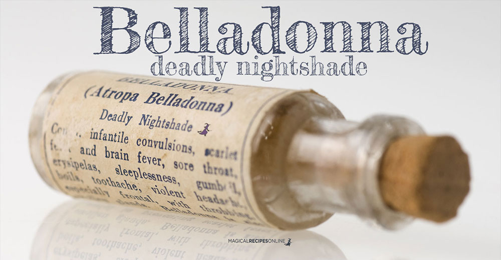 Belladonna, Atropos, Deadly Nightshade: the charming, the shady...the deadly!