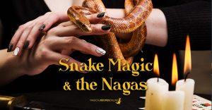 Snake Magic and the Hindu Naga Kings