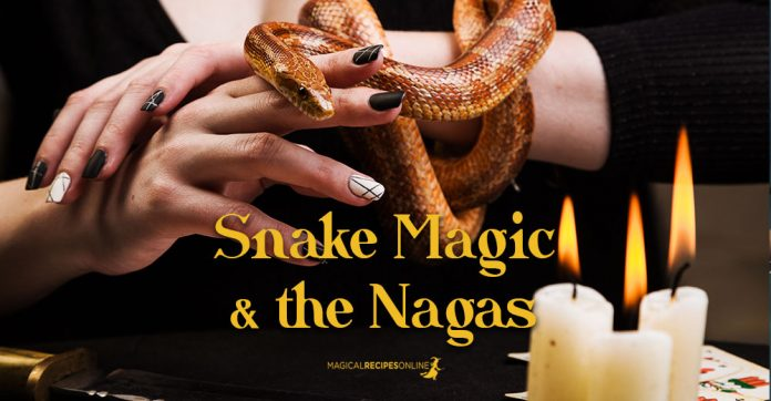 Snake Magic and the Hindu Naga Kings