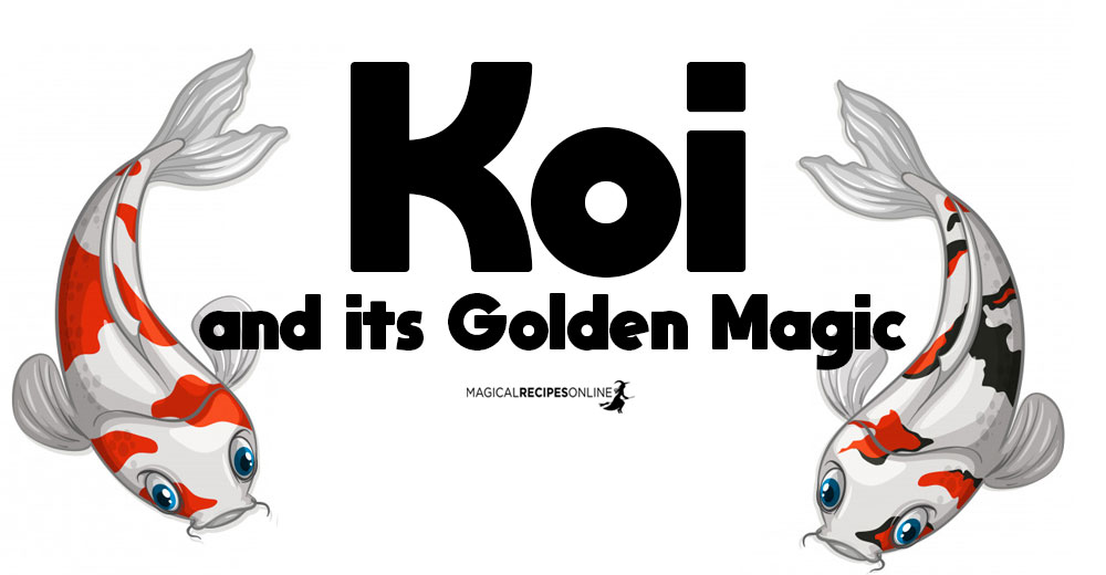 Totem Symbolism: Koi Fish carp and its Golden Magic