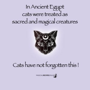 cats magical powers egypt