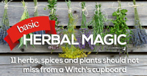 basic herbal magic