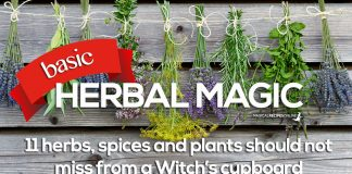 basic herbal magic