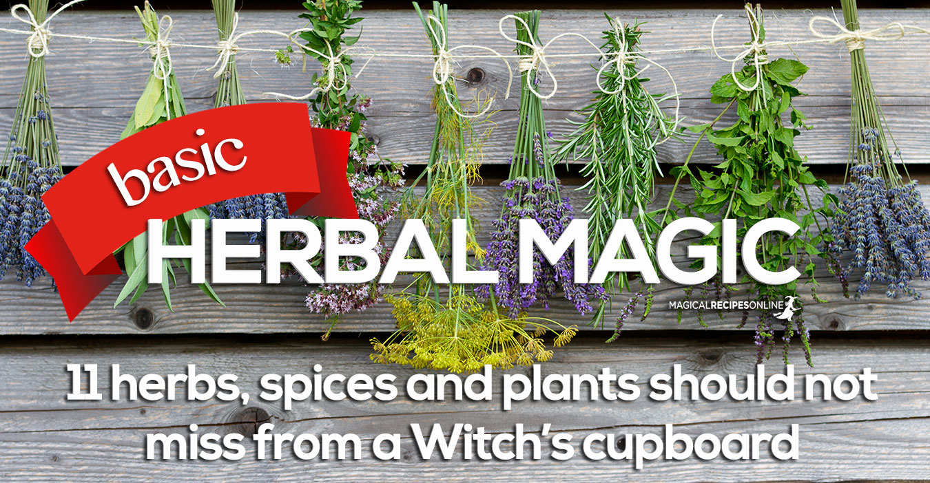 HERBAL MAGIC: 11 magical herbs and spices - Magical Recipes