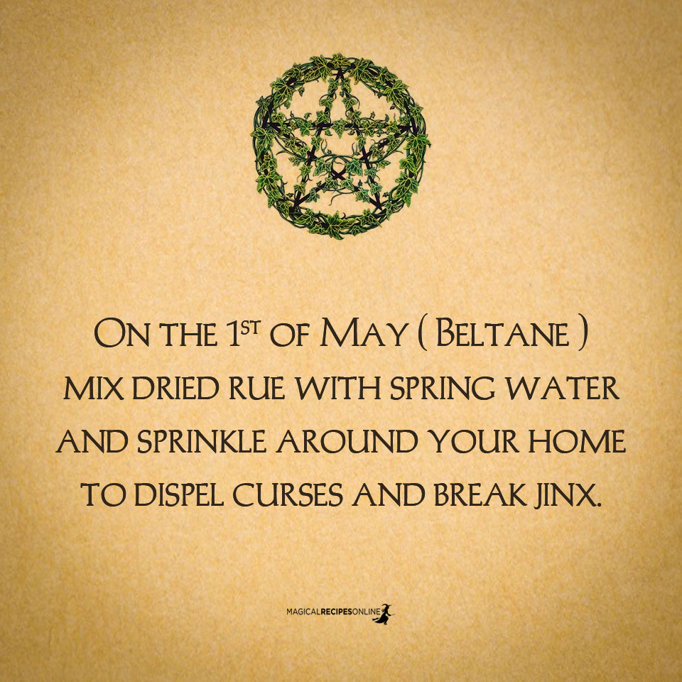 On the 1st of May ( Beltane ) mix dried rue with spring water and sprinkle around your home to dispel curses and break jinx.