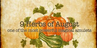 magical amulet lammas day 9 herbs of august