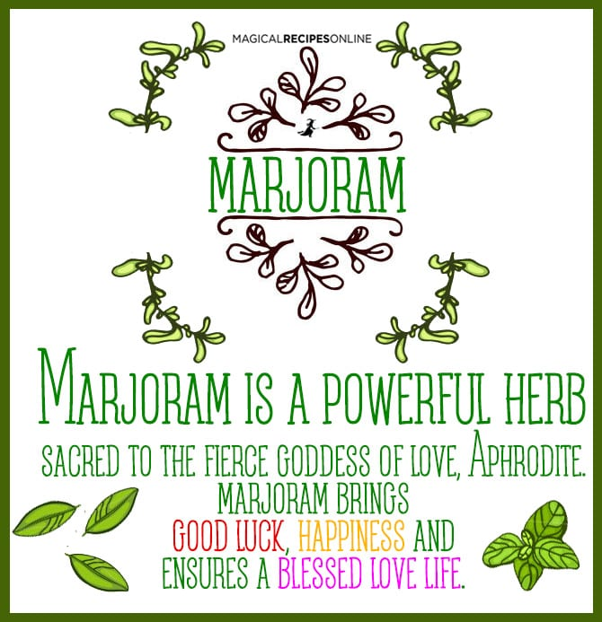 Herbal Magic of Marjoram