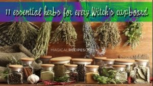 HERBAL MAGIC: 11 magical herbs and spices - Magical Recipes Online