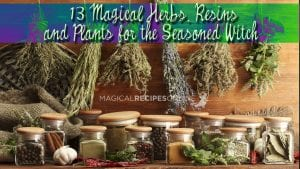 13 magical herbs