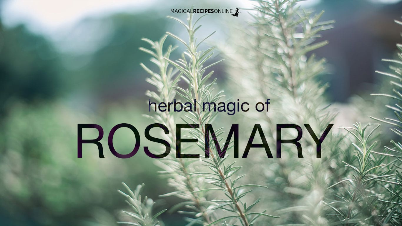 Herbal Magic of Rosemary - Magical Recipes Online