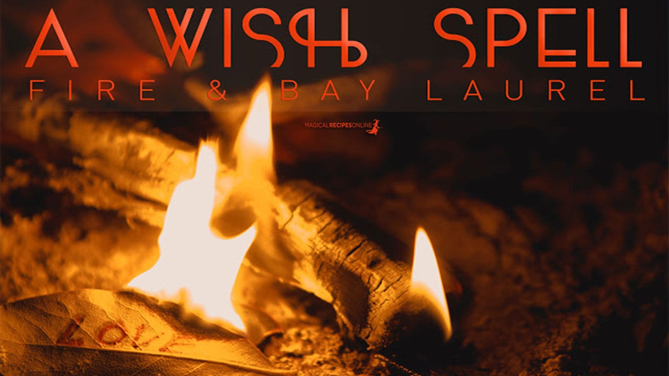 a wish spell with bay laurel