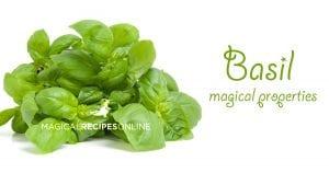 herbal magic of basil