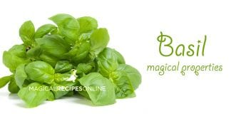 herbal magic of basil