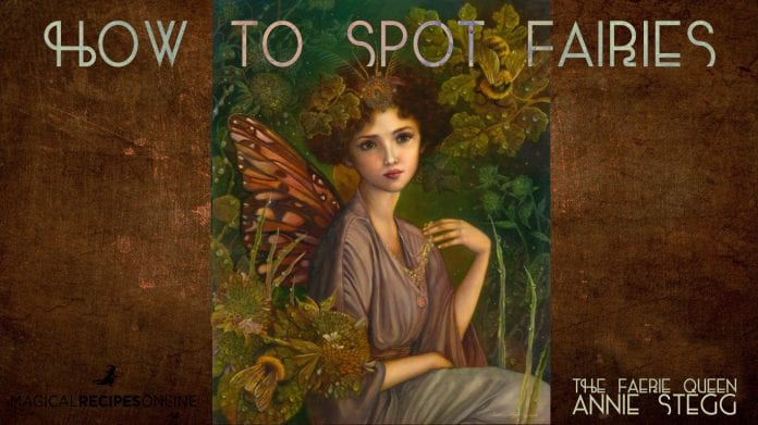 how to spot fairies