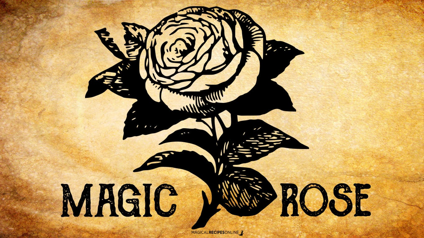 The Magic Of Rose Magical Recipes Online