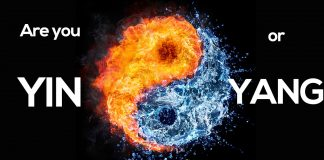 Quiz: Are you Yin or Yang?