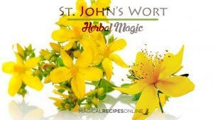 Herb Analysis: Saint John's wort, the Summer Solstice Litha herb