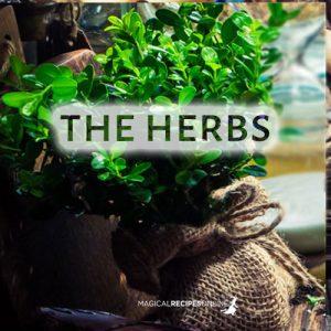 herbs herbal magic quiz