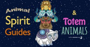Power Animals, Animal Spirit Guides, Animal Totems…. Oh My