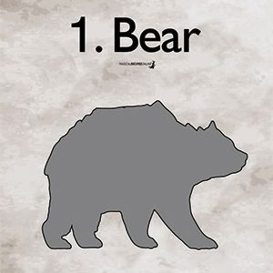 bear what do you see first Quiz