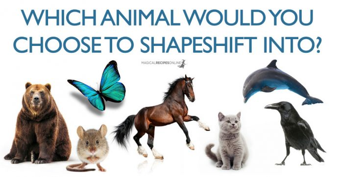 shapeshift quiz