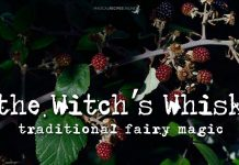 Witch's Whisk
