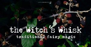 Witch's Whisk – Fairy Magic