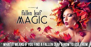 Fallen Leaf Magic – Each one has power