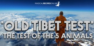 Old Tibet Test