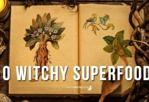 Our Top 10 Witchy Superfoods to prepare us for the Winter