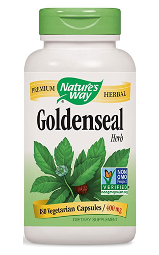 Golden Seal - Goldenseal Herb