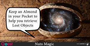 Nuts Magic – Winter's Power in your Pocket