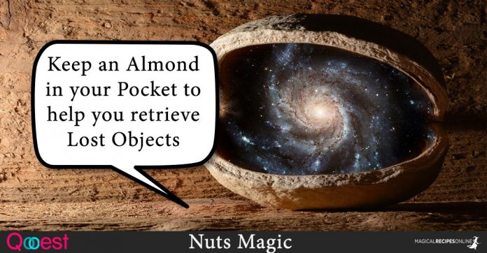 Nuts Magic - Winter's Power in your Pocket