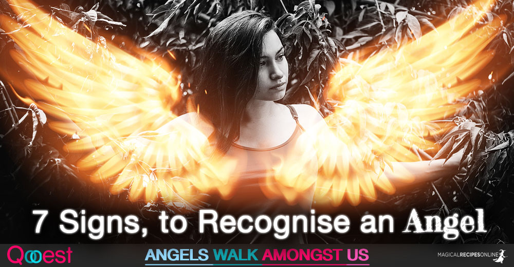 7 Signs Someone you met is an Angel. Angels walk amongst us. They are here. Walking this earth. Here is How to Recognise an Angel