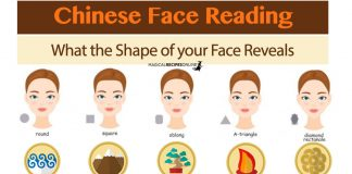 What the Shape of Your Face Reveals