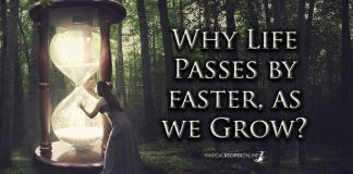 Why Life Passes by faster, as we Grow?