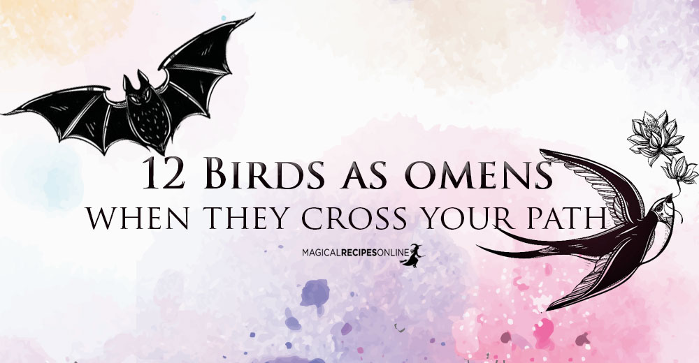 Birds As Omens When They Cross Your Path Magical Recipes Online