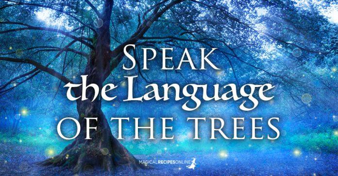 Speak the language of the Trees