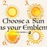 Choose a Sun as Your Emblem - See what it Means