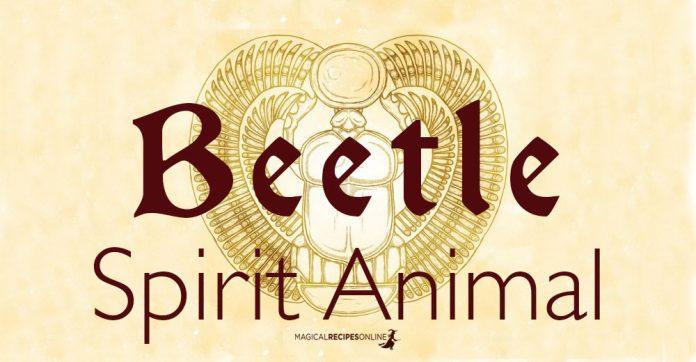 The Beetle Spirit Animal