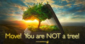 Move on! You are not a Tree!