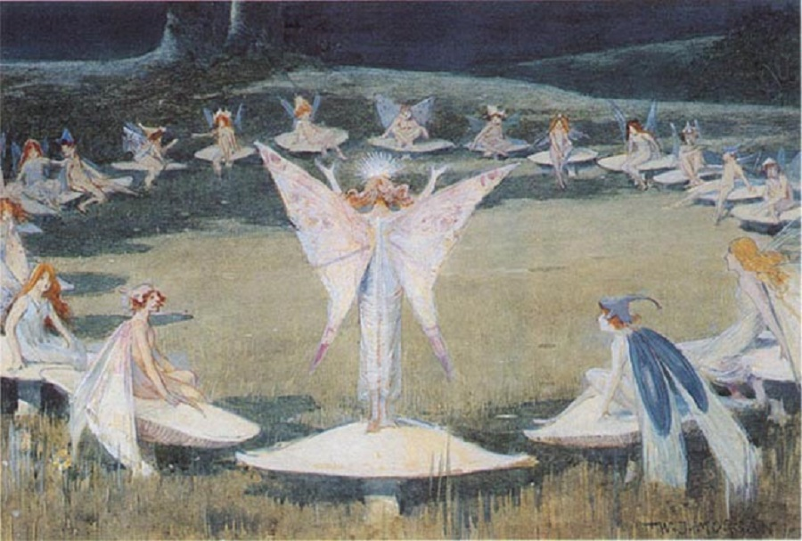 Fairy Rings: A magic portal or a lethal trap? - Magical Recipes Online