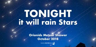Orionids Meteor Shower 2018
