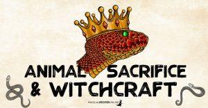 Animal Sacrifice and Witchcraft