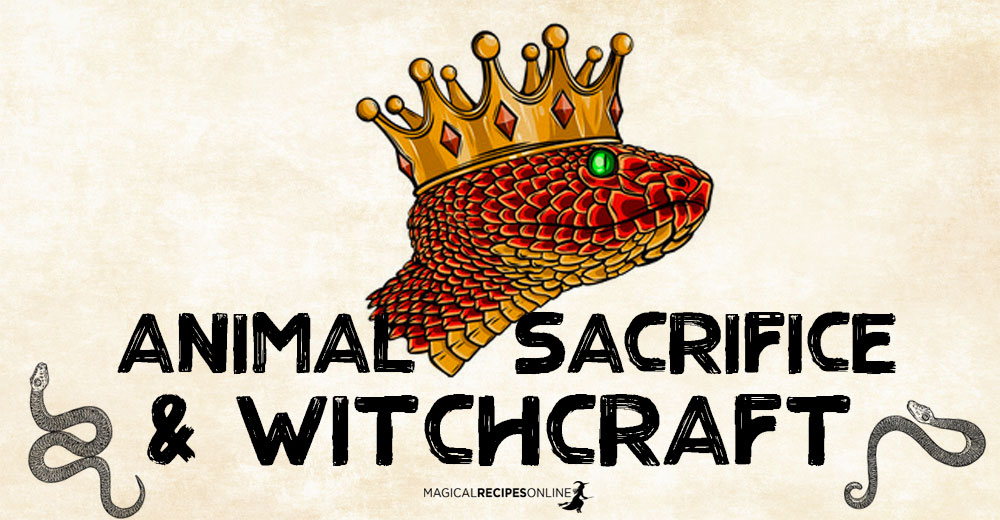Animal Sacrifice and Witchcraft
