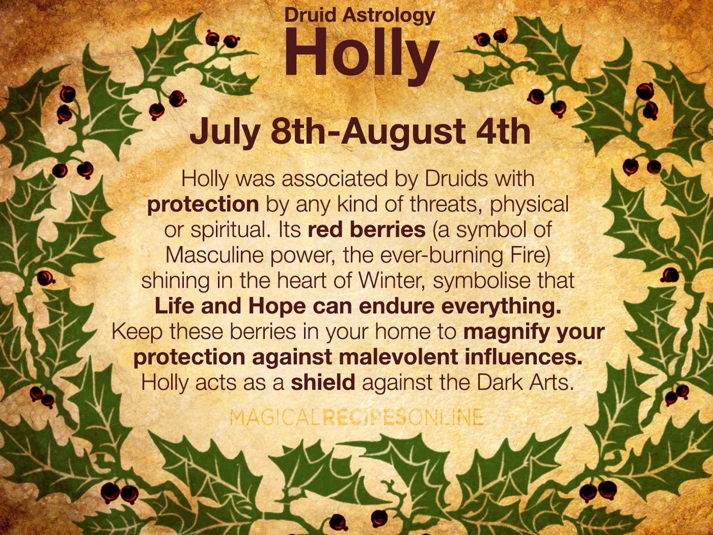 - The Month of Holly Begins (Celtic Tree Zodiac)