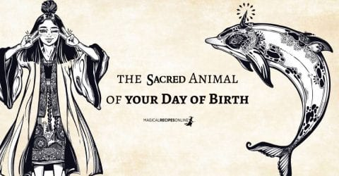 Spirit Animal of your Day of Birth