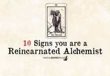 10 Signs you are a Reincarnated Alchemist