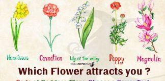 Code of Goddess Flora - Choose a Flower Test